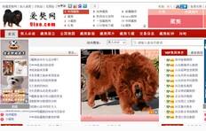 藏獒信息网